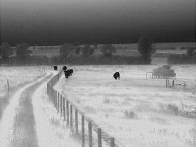 uk infrared spotter